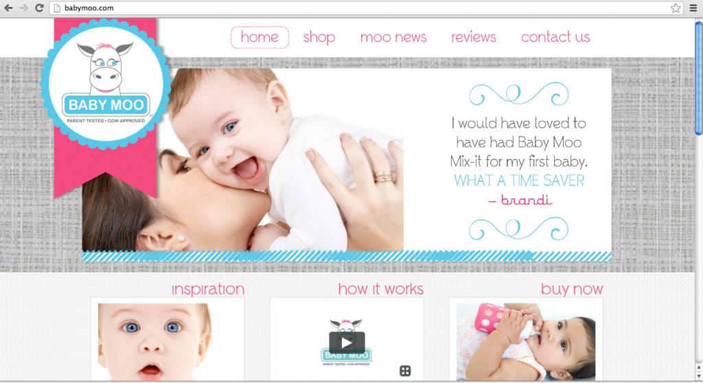 Wordpress eCommerce Website The Savvy Socialista