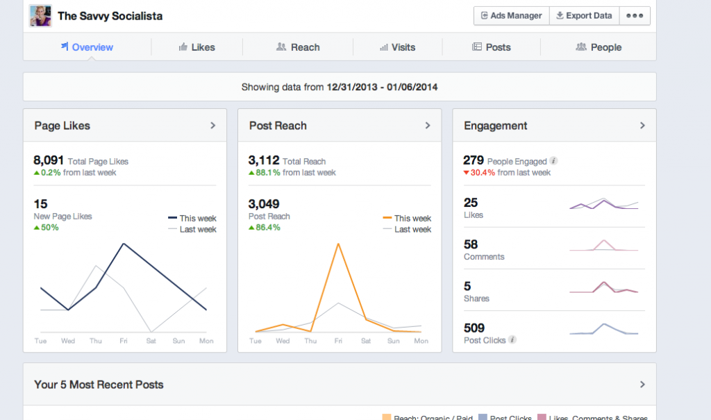 Facebook Insights The Savvy Socialista